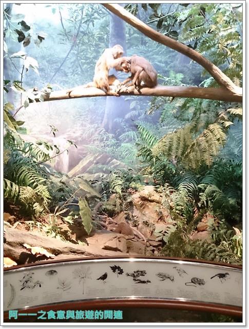 台中親子旅遊景點木乃伊國立自然科學博物館恐龍渾天儀水鐘image027