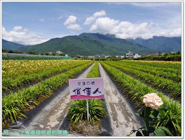 花蓮金針花.吉安.嘉德萱草花田.賞花.花蓮旅遊image012