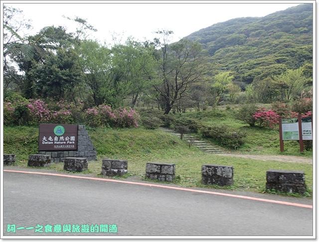 陽明山竹子湖海芋大屯自然公園櫻花杜鵑image007