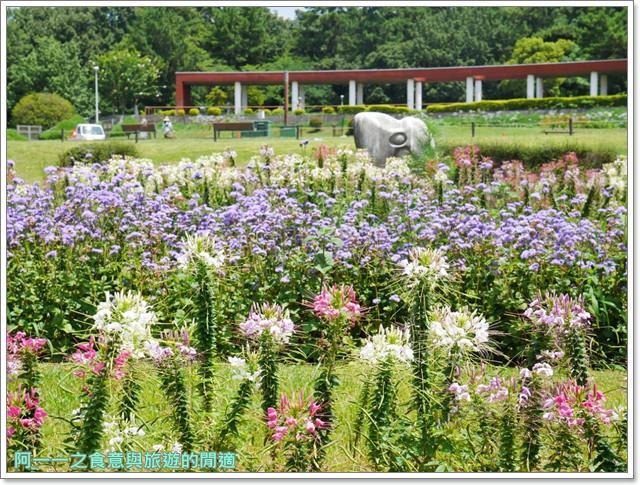 大阪親子景點.日本民家集落博物館.服步綠地.古蹟.老屋image003