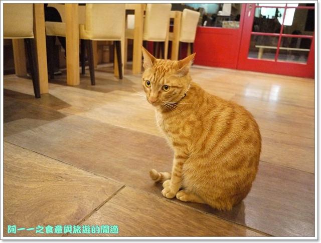 台中貓餐廳立體貓拉花貓旅行咖啡輕食館image039