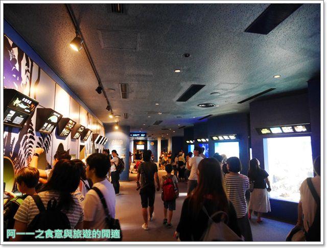 沖繩美麗海水族館.海洋博紀念公園.海豚秀.親子旅遊image030