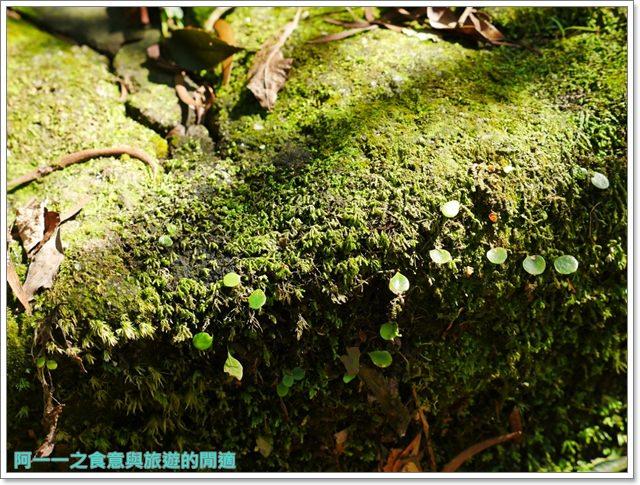 天溪園生態教育中心.陽明山國家公園.親子旅遊.台北好去處image025