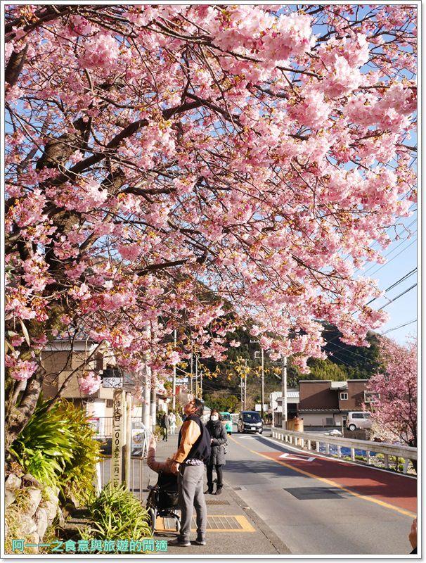 河津櫻.靜岡伊豆.日本自助旅遊.交通.攻略image054