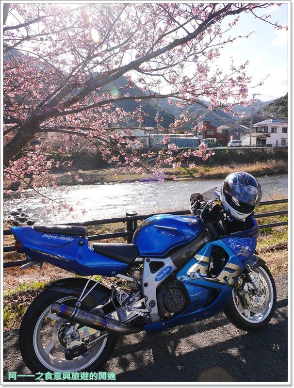 河津櫻.靜岡伊豆.日本自助旅遊.交通.攻略image034