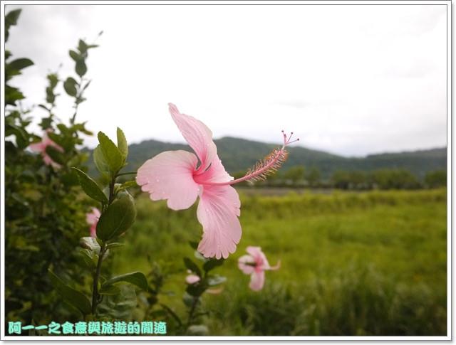 台東鹿野美食春耕源香草火鍋咖啡民宿image011