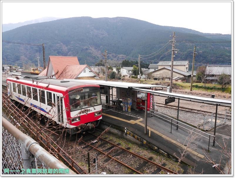 南阿蘇鐵道.阿蘇猿劇場.日本九州旅遊image054