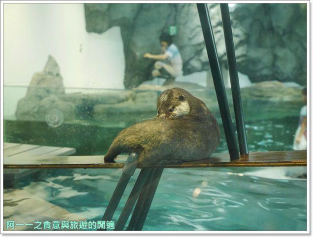 大阪旅遊.expocity.nifrel.海遊館.親子.動物園image048