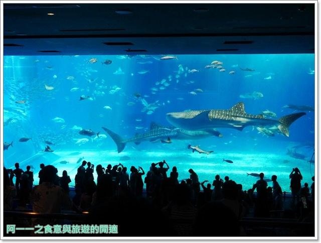 沖繩美麗海水族館.海洋博紀念公園.海豚秀.親子旅遊image001