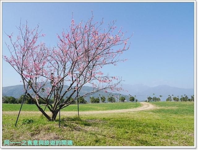台東美食景點初鹿牧場初鹿鮮乳鮮奶櫻花祭放山雞伴手禮image026