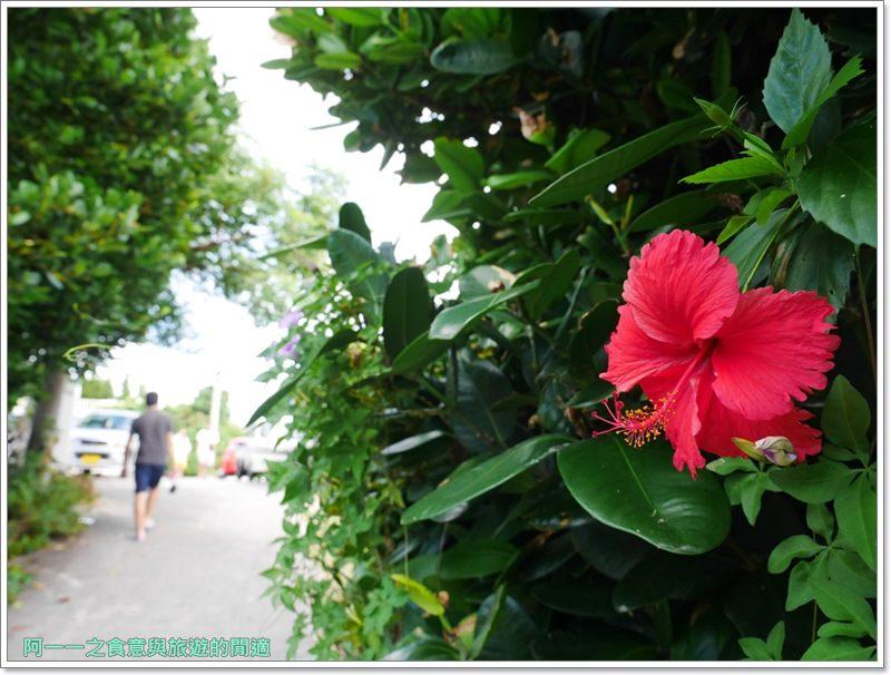 備瀨福木林道.沖繩景點.祕境.美麗海水族館image024