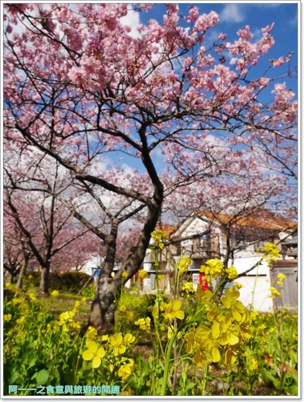 河津櫻.靜岡伊豆.日本自助旅遊.交通.攻略image023