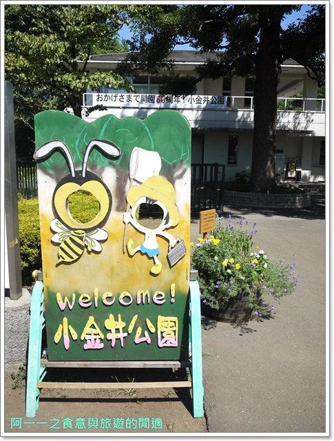 日本江戶東京建築園吉卜力立體建造物展自助image008