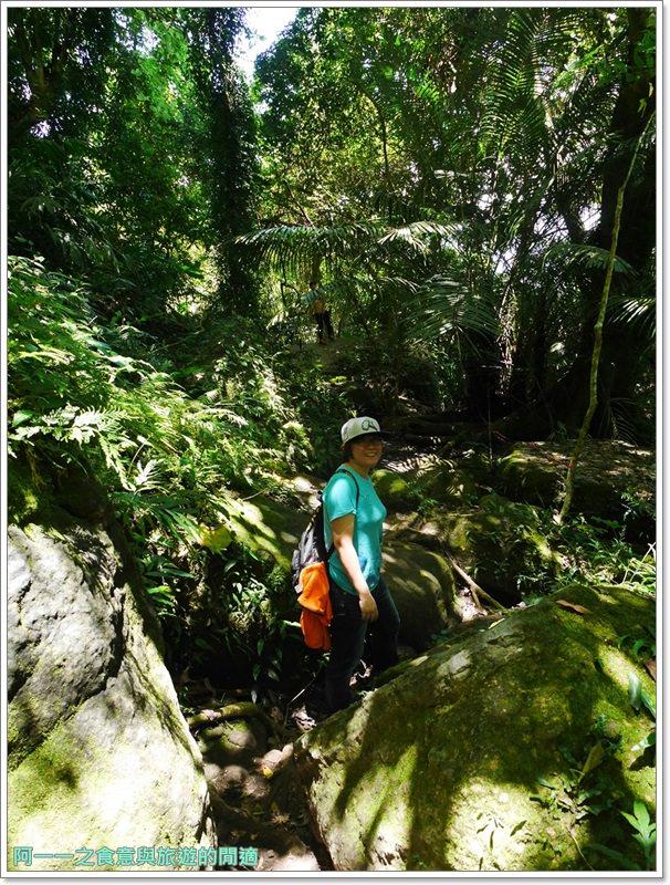 鸞山森林博物館.台東景點.祕境.會走路的樹.阿凡達image044