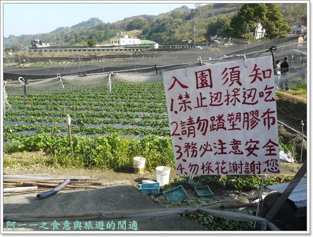 苗栗大湖草莓酒莊花間集image017