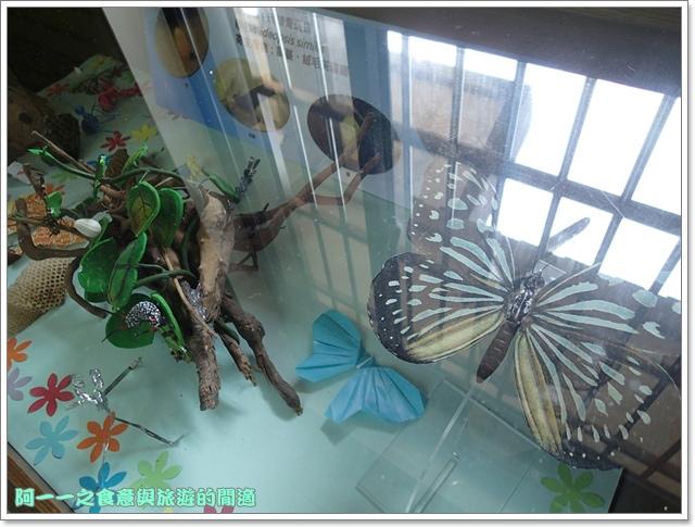 陽明山竹子湖海芋大屯自然公園櫻花杜鵑image069