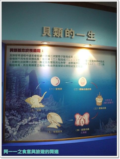 台東成功景點三仙台台東縣自然史教育館貝殼岩石肉形石image010