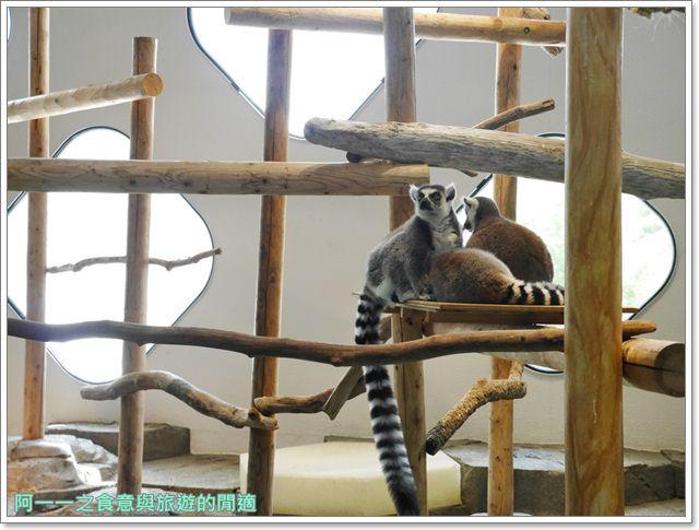大阪旅遊.expocity.nifrel.海遊館.親子.動物園image046