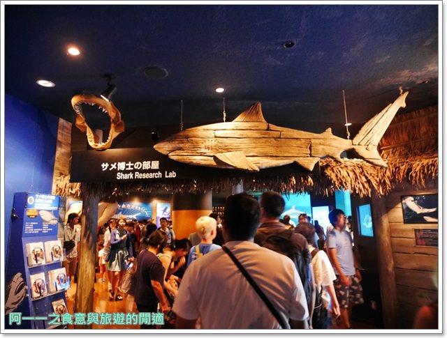 沖繩美麗海水族館.海洋博紀念公園.海豚秀.親子旅遊image044