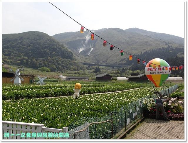 陽明山竹子湖海芋大屯自然公園櫻花杜鵑image093