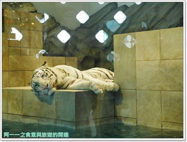 大阪旅遊.expocity.nifrel.海遊館.親子.動物園image037