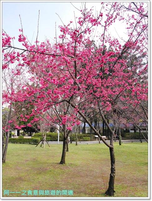 捷運中正紀念堂景點櫻花海綿寶寶暢遊比奇堡特展image054