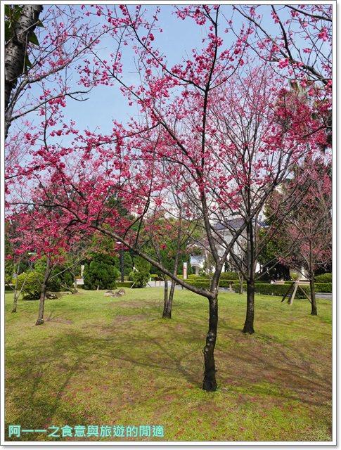 捷運中正紀念堂景點櫻花海綿寶寶暢遊比奇堡特展image053