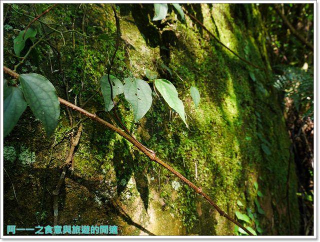 天溪園生態教育中心.陽明山國家公園.親子旅遊.台北好去處image026