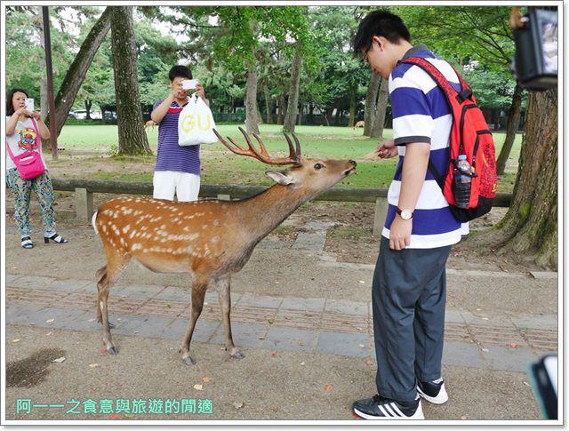 奈良.斑鳩一日卷.鹿.猿澤池.興福寺.五重塔image037