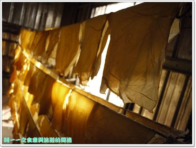 台東池上美食大池豆皮店豆花豆漿老店image023