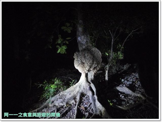 台東旅遊景點夜訪小野柳釋迦冰淇淋image023