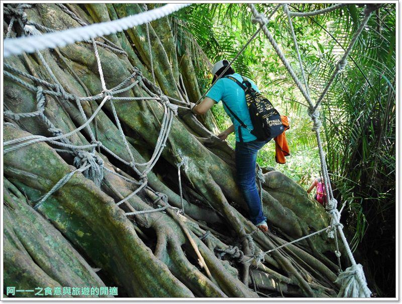 鸞山森林博物館.台東景點.祕境.會走路的樹.阿凡達image043