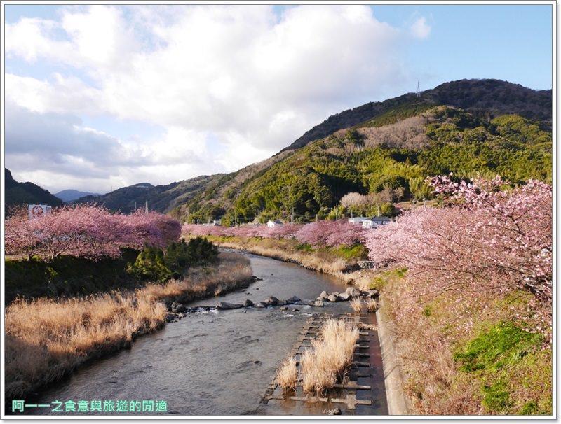 河津櫻.靜岡伊豆.日本自助旅遊.交通.攻略image046