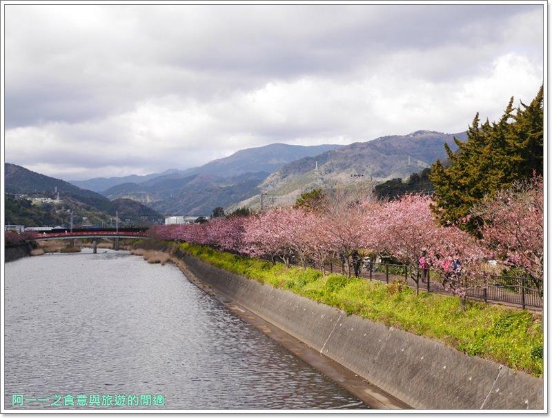 河津櫻.靜岡伊豆.日本自助旅遊.交通.攻略image029