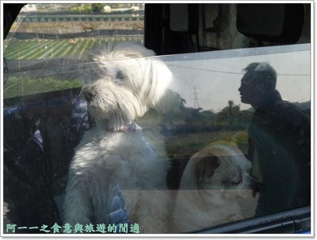 苗栗大湖草莓酒莊花間集image013