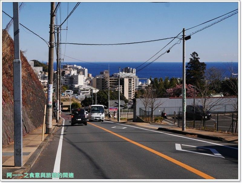 靜岡旅遊.熱海梅園.來宮站.賞花.梅花image015
