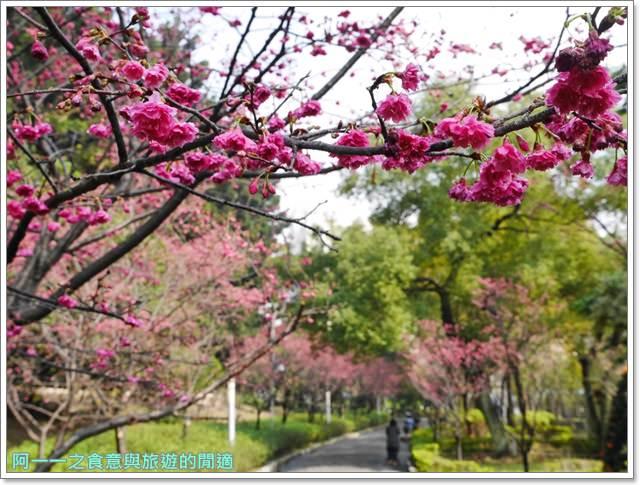 捷運中正紀念堂景點櫻花海綿寶寶暢遊比奇堡特展image064