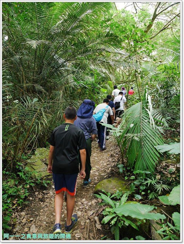 鸞山森林博物館.台東景點.祕境.會走路的樹.阿凡達image009