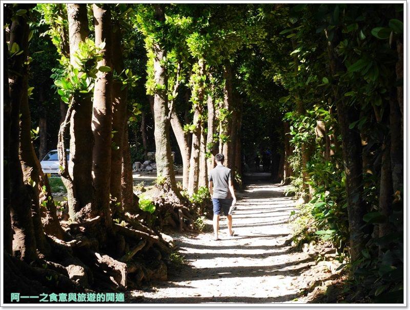 備瀨福木林道.沖繩景點.祕境.美麗海水族館image002