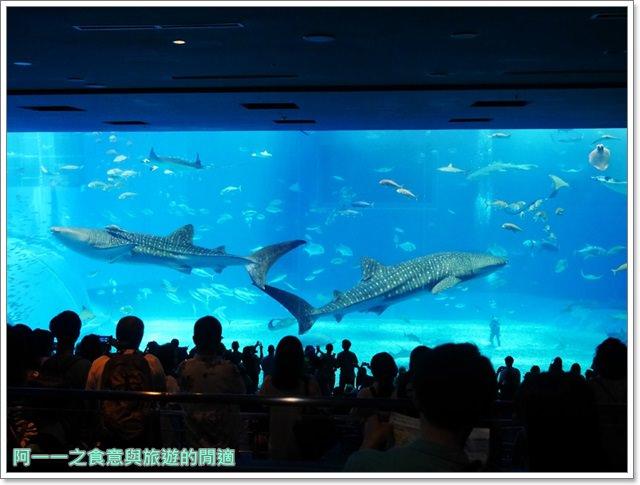 沖繩美麗海水族館.海洋博紀念公園.海豚秀.親子旅遊image040