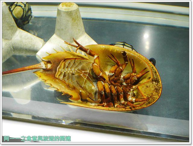 大阪旅遊.expocity.nifrel.海遊館.親子.動物園image019