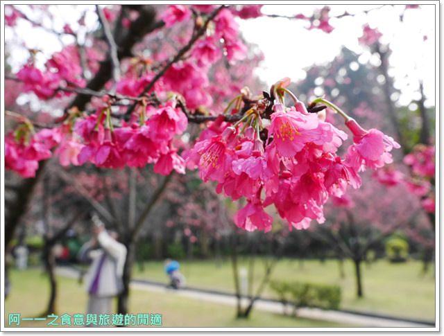捷運中正紀念堂景點櫻花海綿寶寶暢遊比奇堡特展image057