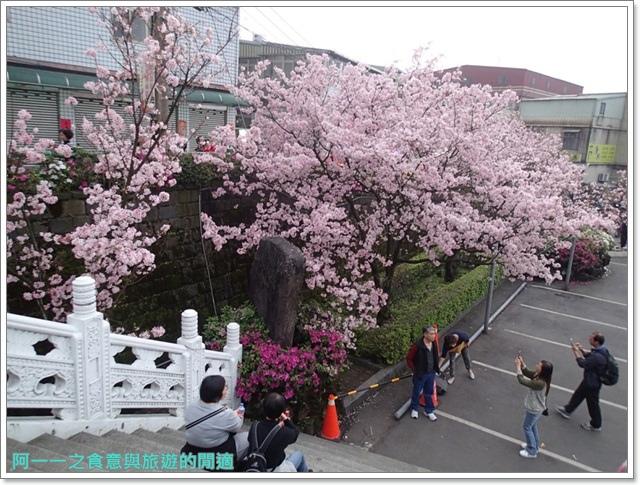 淡水天元宮吉野櫻花交通公車拍攝攻略懶人包image002