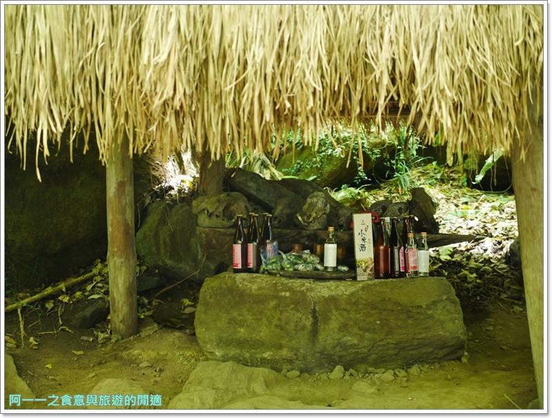 鸞山森林博物館.台東景點.祕境.會走路的樹.阿凡達image032