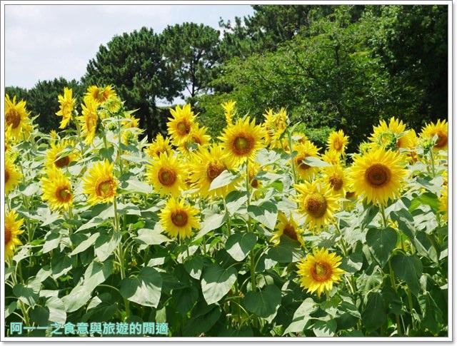 大阪親子景點.日本民家集落博物館.服步綠地.古蹟.老屋image020