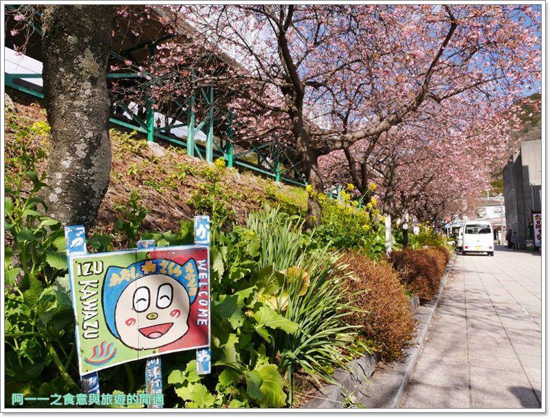 河津櫻.靜岡伊豆.日本自助旅遊.交通.攻略image014