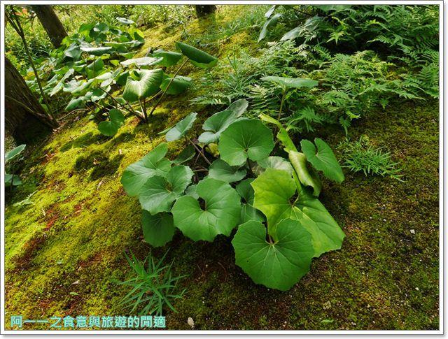 姬路城好古園活水軒鰻魚飯日式庭園紅葉image049