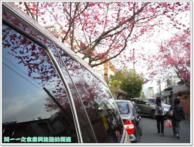 image095桃園客家文化館櫻花