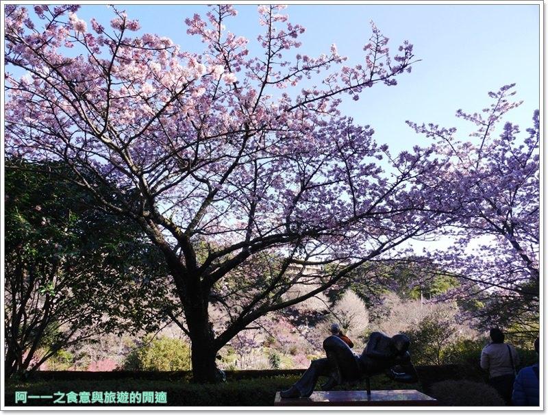 靜岡旅遊.熱海梅園.來宮站.賞花.梅花image055