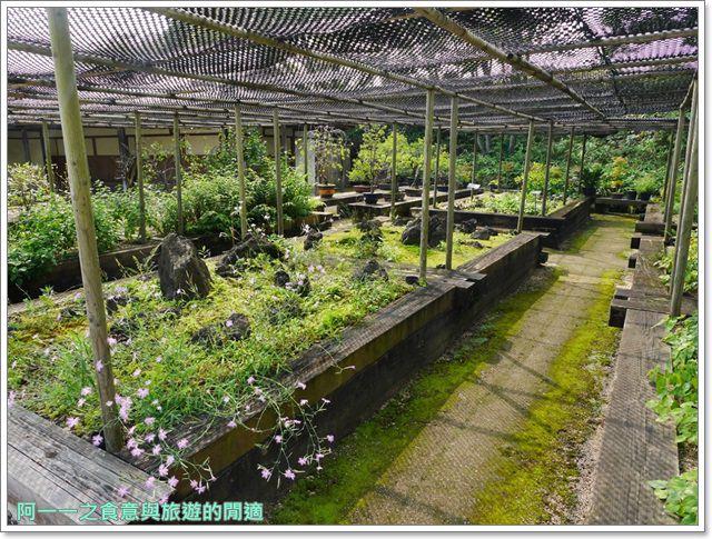 姬路城好古園活水軒鰻魚飯日式庭園紅葉image051